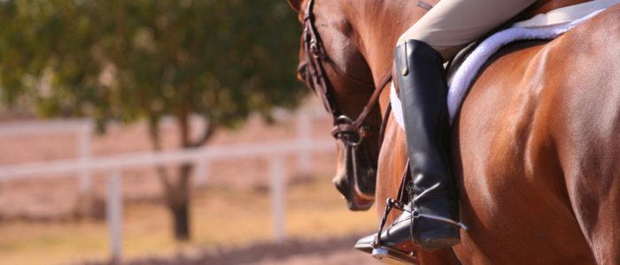 Equitazione a Como